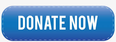 Blue Donate Now Button - Donation - Free Transparent PNG Download ...